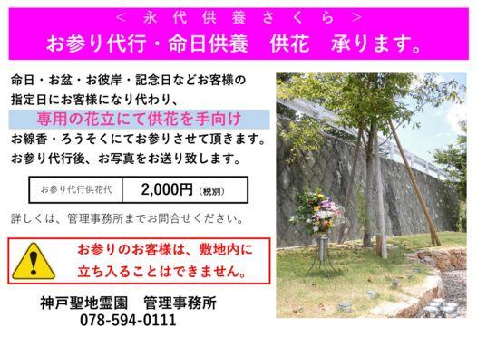 koubeseichi20200829e.jpg