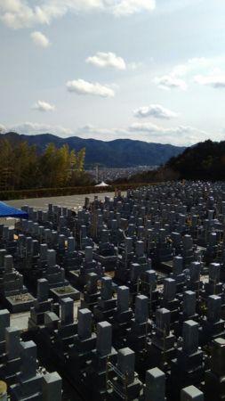 momoyama20180223f.jpg
