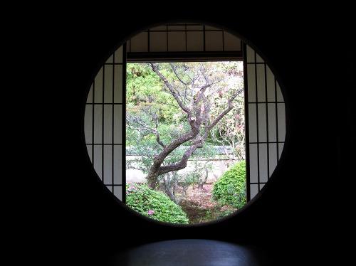 毎日放送『美の京都遺産』で雲龍...