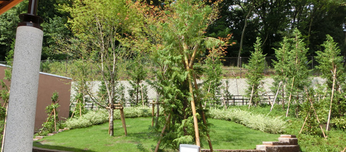 樹林式墓地