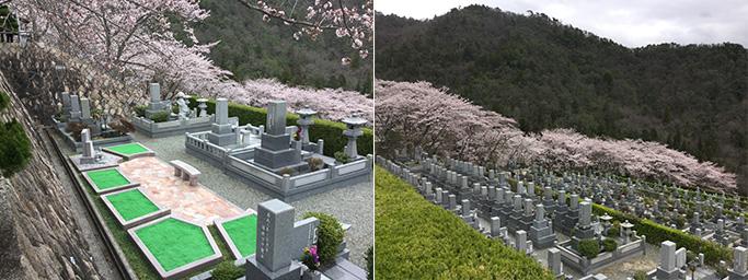 猪名川霊園イメージ